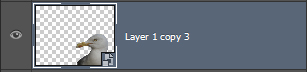 Slim object in Photoshop_Laag slim object