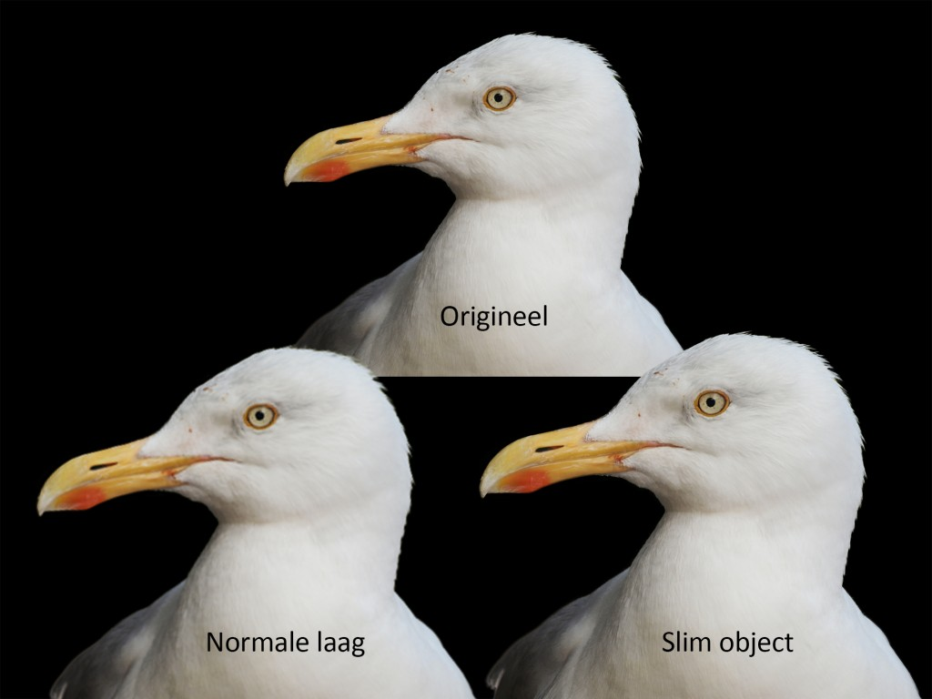 Slim object in Photoshop_resultaat